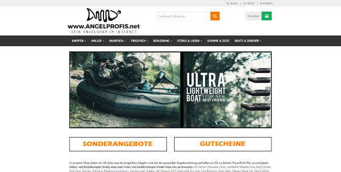 angelprofis.net